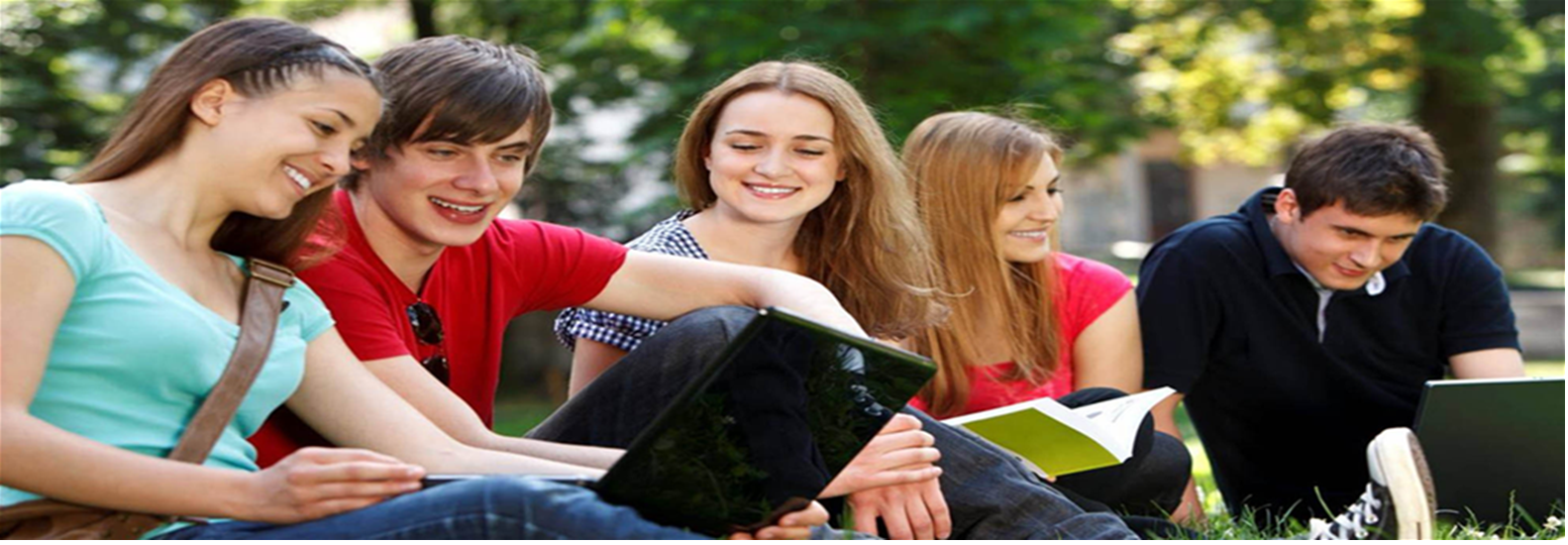 buy essay online reviews
